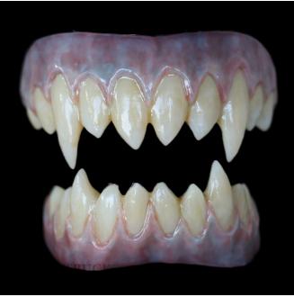 Korrigan Teeth - Maccus Blue Gums - Stained Finish